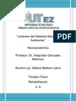 Lesiones del Sistema Nervioso Autónomo (2).docx