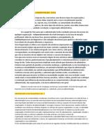 TEORIA GERAL DA ADMINISTRAÇÃO1.docx