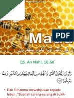 sains-islam-bagian-2-marifatullah-madu