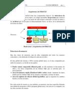 arquitectura de oracle.pdf