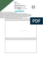 1521 proc anal CLC D.doc