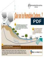Infografia - Humedales Costeros - Pantanos de Villa-libre