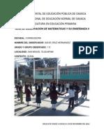 Guia de Observacion Matematicas II