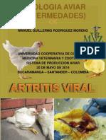 Artritis Viral y Pullorosis