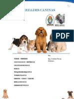 PDF Para Caninos