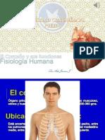 El Corazón y Sus Funciones Aida (Informática)