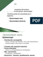 Hymenolepiosis y Dipilidiosis 2013 (2)