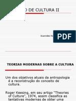Conceito de Cultura II