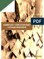 10. Gestion de Los Inventarios de Articulos Con Demanda Independiente