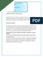 Fosforilacion Del ATP a Nivel de Sustrato