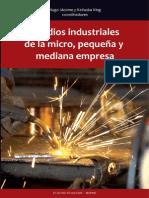 Estudios Industriales Mipymes