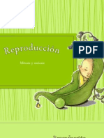 Reproducción - copia.pptx