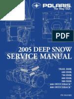 2005 Deep Snow Polaris 900 Service Manual