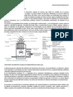 Instrumentación de Biorreactores