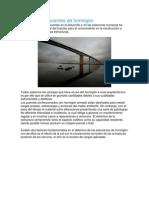 Datos Patología en Puentes de Hormigón