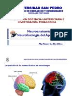Neuroanatomia y Neurofisiologia del Aprendizaje.pdf