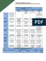 Programa Propedéutico Arq 2014