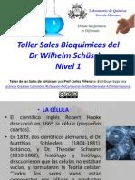 Taller Sales Bioquímicas Nivel 1