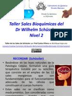 Taller Sales Bioquímicas Nivel 2