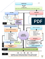 Conceptual Framework th