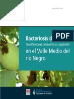 INTA Bacteriosis Del Nogal