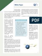 Mpls VPN Whit Paper