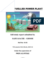 Final Report of Biomass Fuelled Power Plant