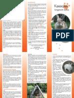 Kaninchen Flyer