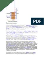 aislantes termicos neutronicos
