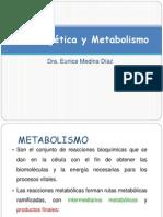 _Bioenergética.pptx_