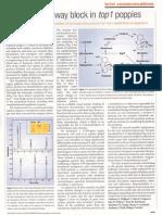 Millgate et al. (2004) Genetically modified poppy