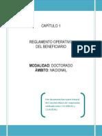 Reglamento Operativo 2013 Convocatoria 617 Nacional Abril25