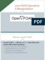 Open Foam