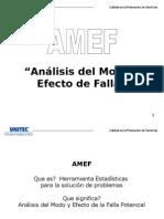 AMEF Final (1)