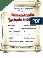 Informe_practicas_profesionales