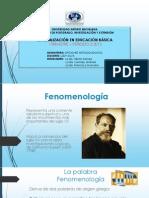 Fenomenologia y Estudio de Casos 08 Julio 2014