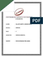 DA Derecho-Huaraz Jessenia Gallupe Trabajo Investigacion Formativa