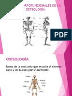 miología, osteología