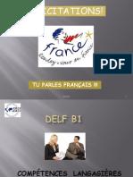 61494988 Delf B1 in Formations PDF