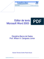 Apostila World 2003