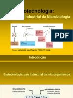 processos biotecnologicos