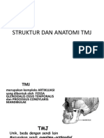 Struktur Dan Anatomi Tmj