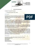 Termilogia y Conceptos _ Transporte Interno de Mercancias