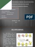 SEMINARIO BILIRRUBINA