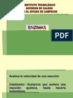 Actividad catalitica enzimas