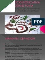 Serpientes, Taxonomia Yolanda