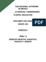 1.3 Derecho Objetivo, Subjetivo, Positivo y Vigente.docx