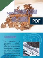 LIXIVIACION ACIDA DEL COBRE (VLADIMIR  ).doc.ppt