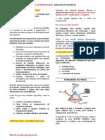 Manual Do Participante 2014