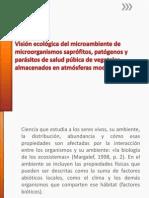Visión Ecológica Del Microambiente de Microorganismos Saprófitos,